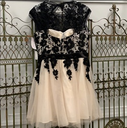 Black Size 16 Cocktail Dress on Queenly