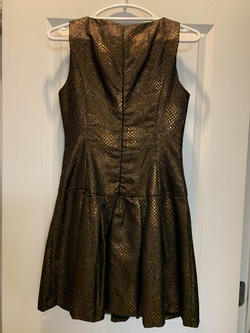 Lucy & Co Gold Size 2 Cocktail Dress on Queenly