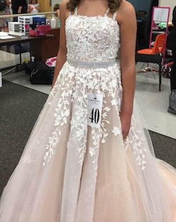 Sherri Hill Nude Size 2 Pageant Train Ball gown on Queenly