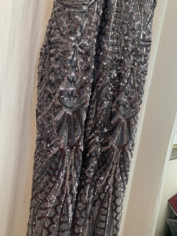 Windsor Silver Size 12 Prom Plus Size Shiny Straight Dress on Queenly
