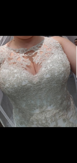 Stella York  Nude Size 24 Sheer Lace Ball gown on Queenly