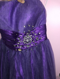 Cinderella Purple Size 6 Medium Height Short Height A-line Dress on Queenly