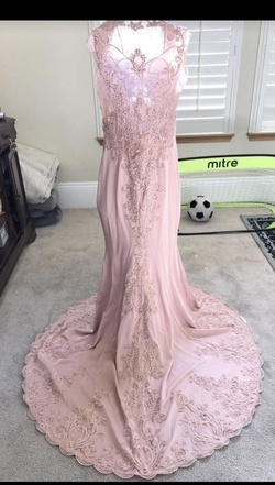 Let's Light Pink Size 16 Plus Size Mermaid Dress on Queenly