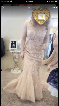 Royal Queen Nude Size 12 Tall Height Lace Mermaid Dress on Queenly