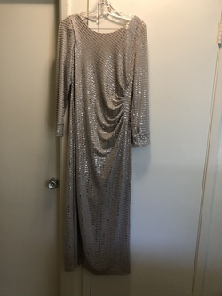 Silver Size 12 Ball gown on Queenly