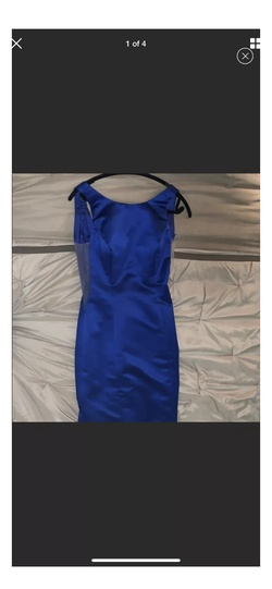 Ashleylauren Blue Size 6 Backless Sheer Fitted Mermaid Dress on Queenly