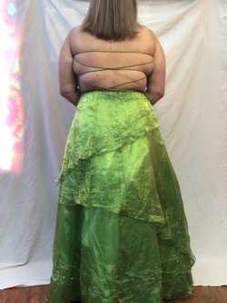 Green Size 18 Straight Dress on Queenly