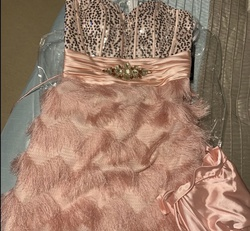 Queenly size 4 Nina Canacci Pink Cocktail evening gown/formal dress