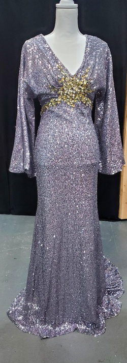Queenly size 4 Mac Duggal Silver Straight evening gown/formal dress