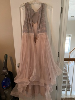 Pink Size 22 Ball gown on Queenly