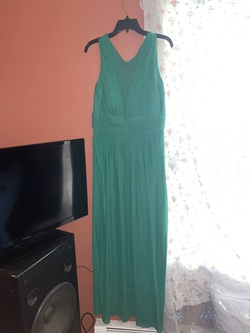 Queenly size 16 Blu Sage Green Straight evening gown/formal dress