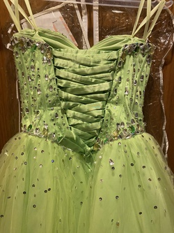 Paparazzi Green Size 8 Jewelled Lime Ball gown on Queenly