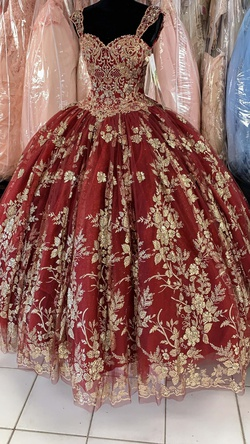 Mori Lee Red Size 0 Floral Quinceanera Ball gown on Queenly
