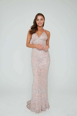 Queenly size 10 Aleta Pink Straight evening gown/formal dress