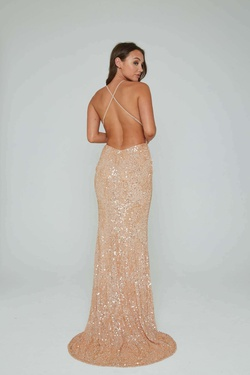Style 274 Aleta Nude Size 14 Tall Height Straight Dress on Queenly
