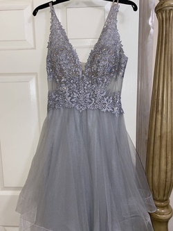 Cachet Silver Size 4 Embroidery Plunge Ball gown on Queenly