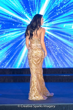 Fernando Wong Gold Size 2 Custom Train Dress on Queenly