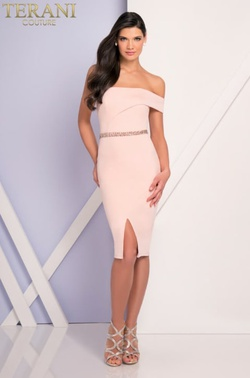 Style 1721C4018 Terani Couture Pink Size 10 Sorority Formal Tall Height Wedding Guest Cocktail Dress on Queenly