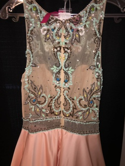 Mori Lee Pink Size 8 Embroidery Pageant Ball gown on Queenly