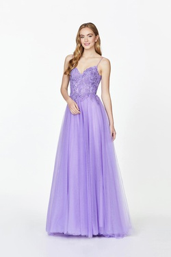 Style 20075 Angela & Alison Purple Size 12 Plus Size Prom A-line Dress on Queenly