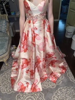 Multicolor Size 0 Straight Dress on Queenly