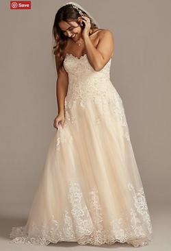 Style 9 David's Bridal Multicolor Size 16 Plus Size Lace Ball gown on Queenly