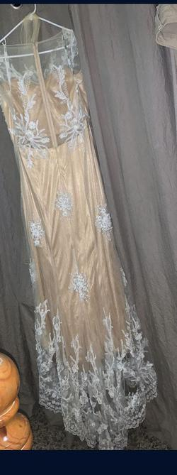 Nude Size 18 Train Dress on Queenly