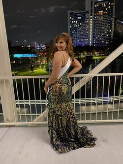 Rachel Allan Multicolor Size 14 Pageant Custom Mermaid Dress on Queenly
