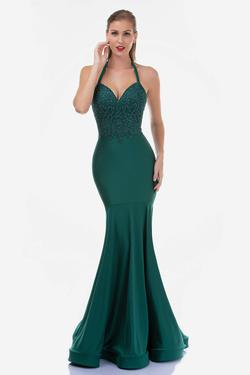 Queenly size 10 Nina Canacci Green Mermaid evening gown/formal dress