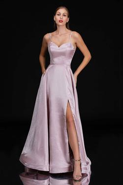 Queenly size 14 Nina Canacci Pink Side slit evening gown/formal dress