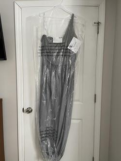 Queenly size 24  Silver A-line evening gown/formal dress