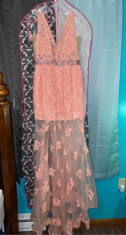 Pink Size 12 Mermaid Dress on Queenly