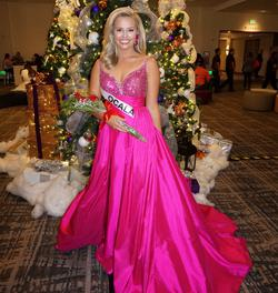 Sherri Hill Pink Size 6 Plunge Pageant Train Dress on Queenly
