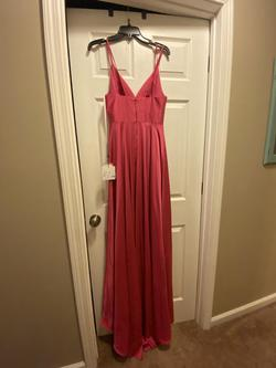 Alyce Paris Pink Size 4 Prom Straight Dress on Queenly