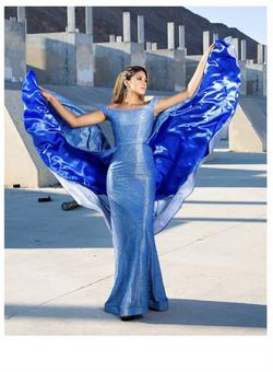 Queenly size 4 Clarisse Couture Blue Train evening gown/formal dress