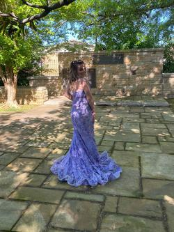 Purple Size 4 Mermaid Dress on Queenly