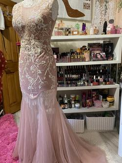 Pink Size 6 Mermaid Dress on Queenly