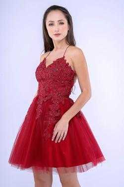 Style 533 Nina Canacci Red Size 10 Corset Flare Backless Cocktail Dress on Queenly