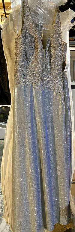 Silver Size 24 Straight Dress on Queenly