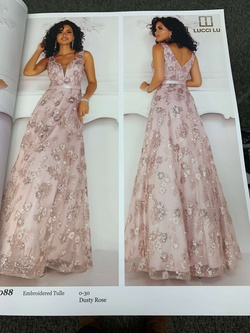 Lucci Lu Pink Size 24 Ball gown on Queenly