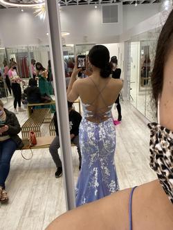 Ellie Wilde Purple Size 6 Mermaid Dress on Queenly
