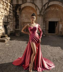 Ramaa Haute Couture Pink Size 4 Tall Height Side slit Dress on Queenly