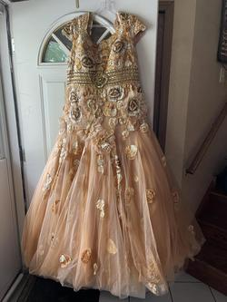 Gold Size 20 Train Dress on Queenly