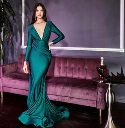 Green Size 18 Mermaid Dress on Queenly