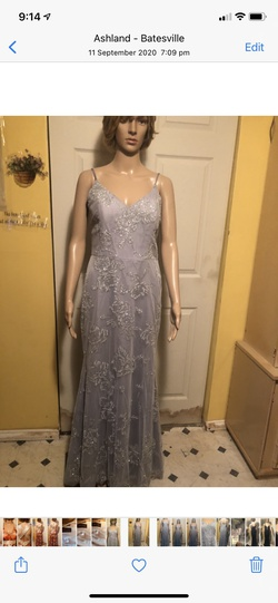 Silver Size 8 Straight Dress on Queenly