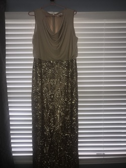 Calvin Klein Gold Size 14 Tall Height Straight Dress on Queenly