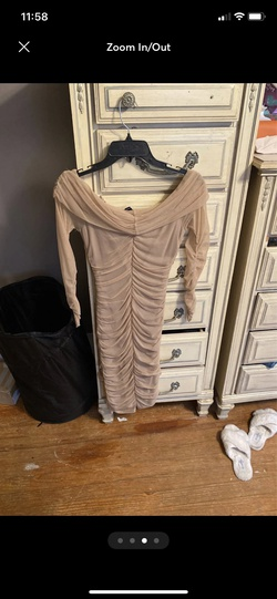 Windsor Nude Size 2 Short Height Straight Dress on Queenly