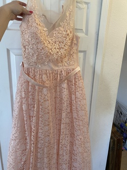 Pink Size 22 Straight Dress on Queenly