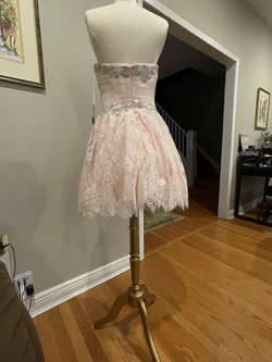 Pink Size 6 A-line Dress on Queenly