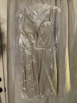 Cinderella Silver Size 10 Flare A-line Dress on Queenly